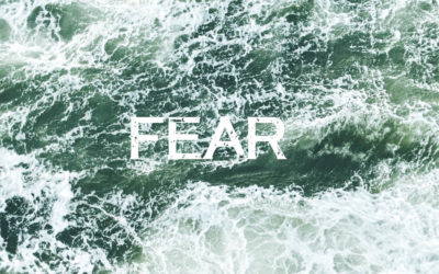 My Thoughts on Fear…