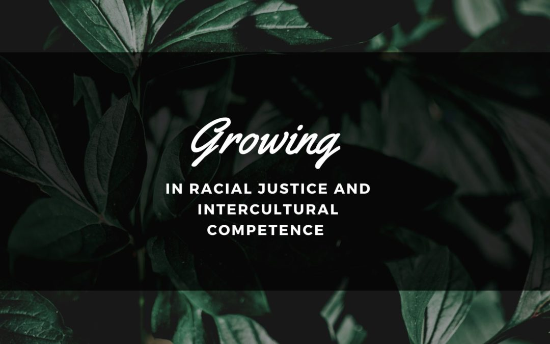 Growing in Racial Justice and Intercultural Competence